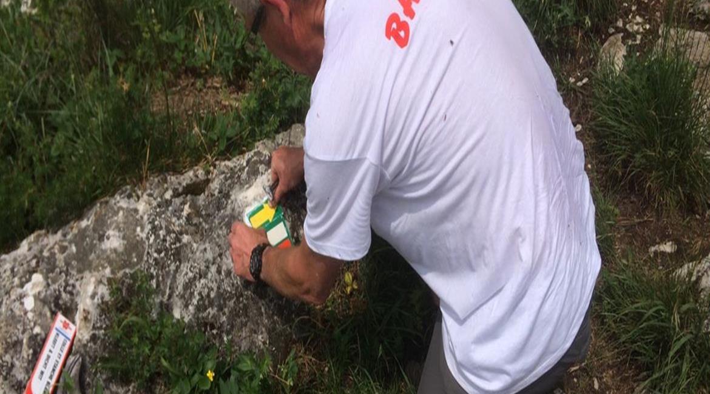 La Haute-Savoie fête les 70 ans des GR