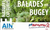 "AIN : Guide ""Balades du patrimoine en Bugey"""