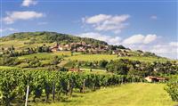 RHÔNE : En itinérance dans le Beaujolais