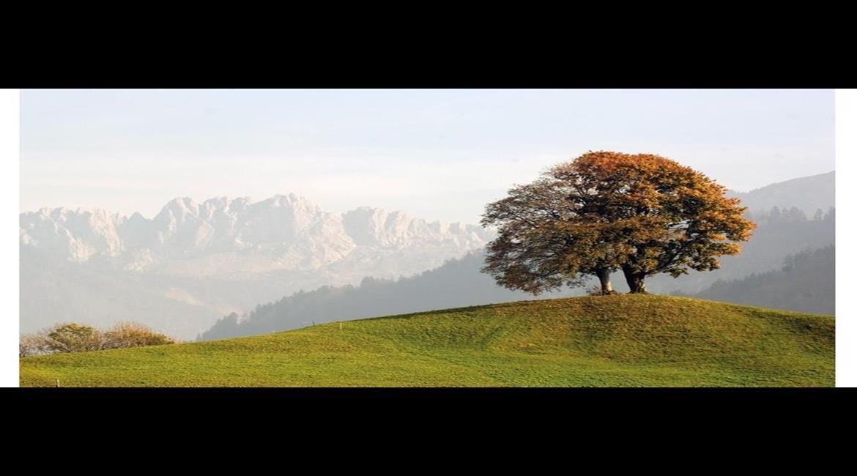 SUISSE : Une terre de randonnée sans égale