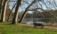 Des randofiches® pour découvrir le Grand Lyon de parcs en jardins