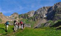 Le comité FFRandonnée Auvergne-Rhône-Alpes recrute un stagiaire